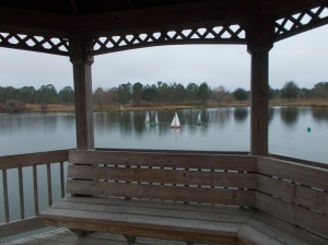 View from gazebo