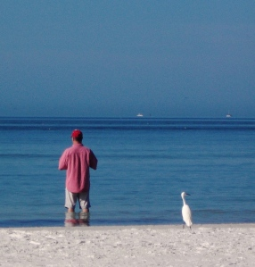 Bob and snowy egret
