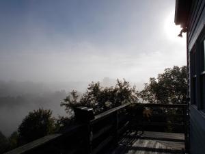 goodbye foggy mornings