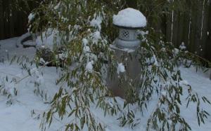 granite lantern in bamboo