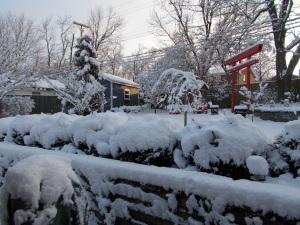 Torra Gate (red) to meditation garden