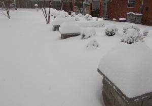 2015-03-05 snow 023_crop