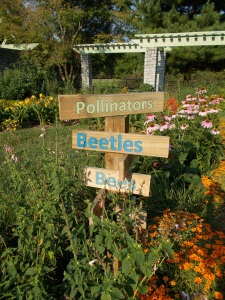 This is the pollinator garden