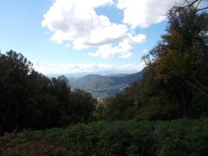 Bull Creek valley from Blue Ridge Pkwy