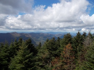 view from Mount Mitchell summit