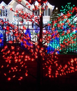 2015-12-11 Chinoe Christmas display 005_crop