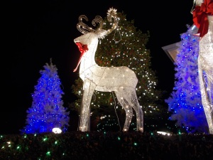 2015-12-11 Chinoe Christmas display 023_b