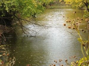 creek_b